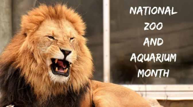 National Zoo and Aquarium Month